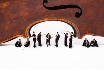 LL-Cello